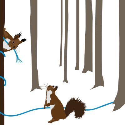 Piirros oravista kaapelin kanssa
