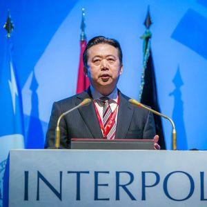 Meng Hongwei som utsågs till president för Interpol år 2016, försvann i slutet av september då han reste till Kina