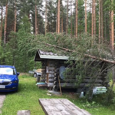 Puu kaatunut myrskyssä pikkumökin päälle.