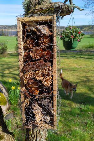 Insekthotell, Pontus Svensson, Tenala
