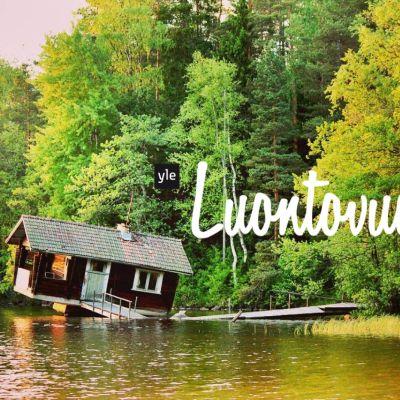 Vino sauna järven rannassa