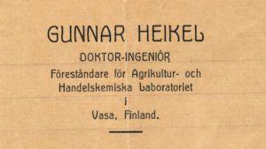 Brevhuvud (Gunnar Heikel)