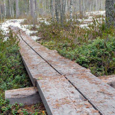 Maasydänjärven pitkospuut puretaan kesän 2018 aikana.