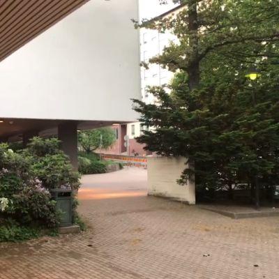 Hirvi juoksee Kotkassa Ruotsinsalmenkatua pitkin kohti Sapokkaa. Kuvankaappaus videolta.