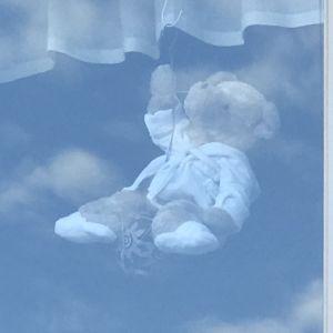 En nalle i ett fönster.