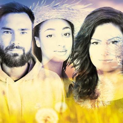 Kollage m,ed fyra sommarpratare i drömlika färger mot en äng.