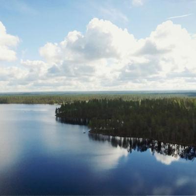 Ilmakuva järvestä, kesäinen tyyni sää, pilvet heijastuvat järvestä, vihreää metsää