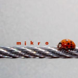 Leppäkerttu kävelee vaijeria pitkin - mikrotekoja
