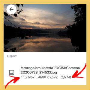 Kuvakaappaus Google Kuvista: Avattuna valokuvan tiedot, jolloin koko näkyy pikseleinä ja tavuina.