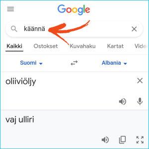 Kuvakaappaus nettiselaimesta: Hakusanalla käännä aukeaa Google Kääntäjän käännösikkuna hakutulosten alkuun.