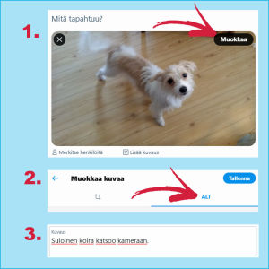 Kuvakaappauksia Twitteristä: Kolmiportainen ohje alt-tekstin lisäämiseksi kuvaan.