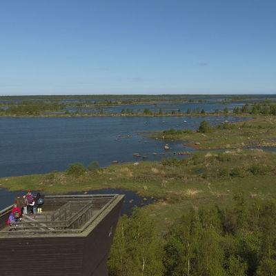 Utsiktstornet Saltkaret vid Svedjehamn