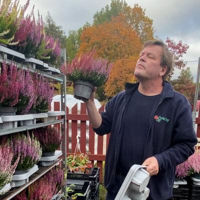 En man står vid en ställning med krukväxter. Han flyttar en växt högre upp i ställningen. Han ser allvarsam ut.