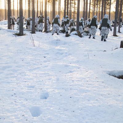 varusmiehet kävelee lumessa, jalankälkiä