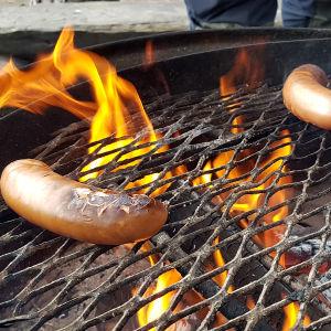 Makkaraa grillataan