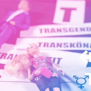 Två dockor (en man och en kvinna) som ligger ovanpå papperslappar där det står: transgender, transkönad samt transvestit.