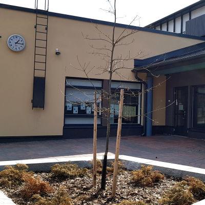 Vuoksenniskan koulukeskus