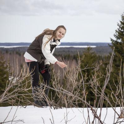 Emilia Piipponen hypistelee marjapensaan oksaa.