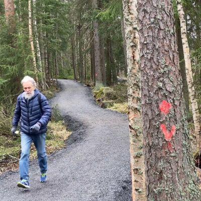 Mies kävelee reippaasti mutkittelevalla metsäpolulla