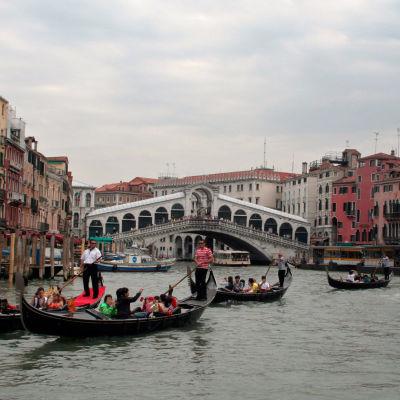 Gondoleja ja muita veneitä Venetsian Canal Grandella, taustalla Rialton silta.