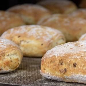 Semlor på en plåt i ett bageri.