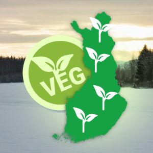 Talvinen peltomaisema jonka päällä grafiikka vegaanisesta Suomesta
