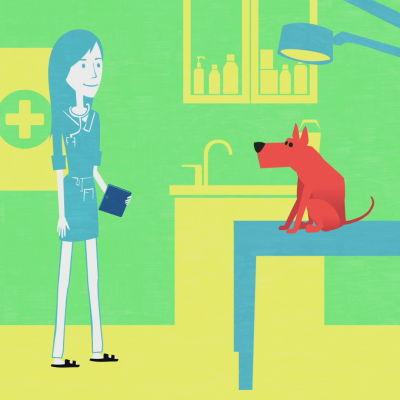 Eläinlääkari koiran kanssa tutkimushuoneessa