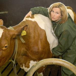 Sari Havas sarjassa Lehmän vuosi