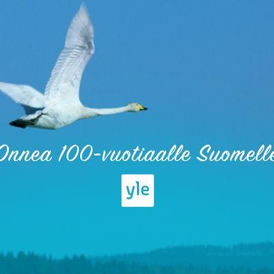 Onnittelukuva 100-vuotiaalle Suomelle