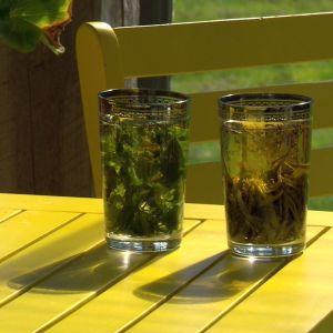 Alexandra gör två sorters te på citronskal