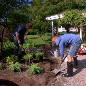 Jonathan gräver, Owe planterar