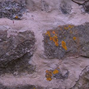 En stengrund kan avslöja husets ålder