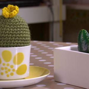 Lees virkade kaktus och kaktusar av sten.