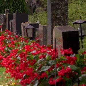 Gravar på kyrkogård
