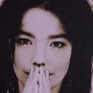 Stockram av björk med Björk.