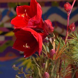 Blommor i rätt färgskala.