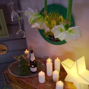 Installation med hängande amaryllis.