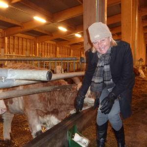 Ann Storsjö är en av de köttproducenter som ska lotsa fram ett nytt slakteri i Västnyland