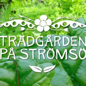 Programlogo för Trädgården på Strömsö