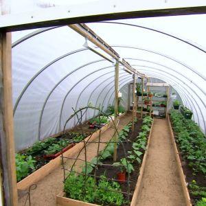 ett växthus av plast