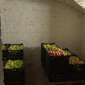 äppel i lådor
