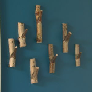 Krokar på väggen