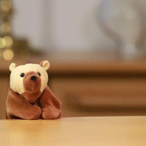 världens minsta björn