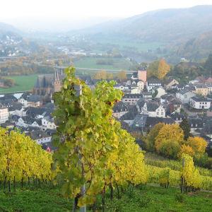 Saarburgin kylä ja viinitarha.