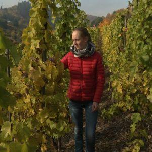 Christiane Wagner omassa viinitarhassaan.