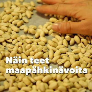Kuvassa pähkinöitä