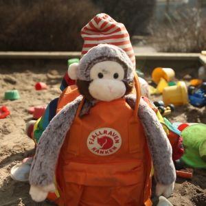 apina repussa hiekkalaatikolla