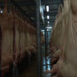 Lihan riiputus teurastamossa