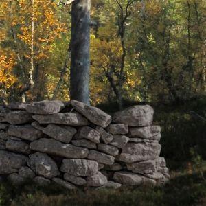 Kasa kiviä.