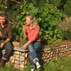 Elin ja Owe Strömsön puutarhassa